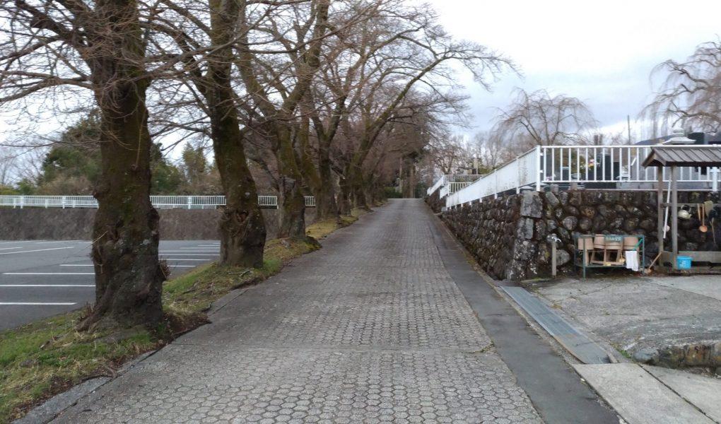 このような舗装路を登っていくとキャンプ会場があります 車で会場内まで進入できます。